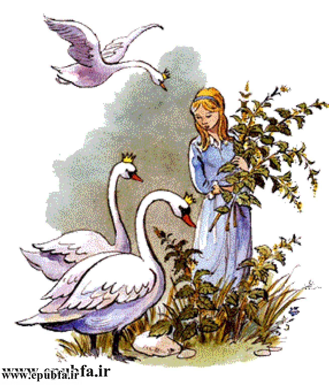 wild-swans-1.jpg