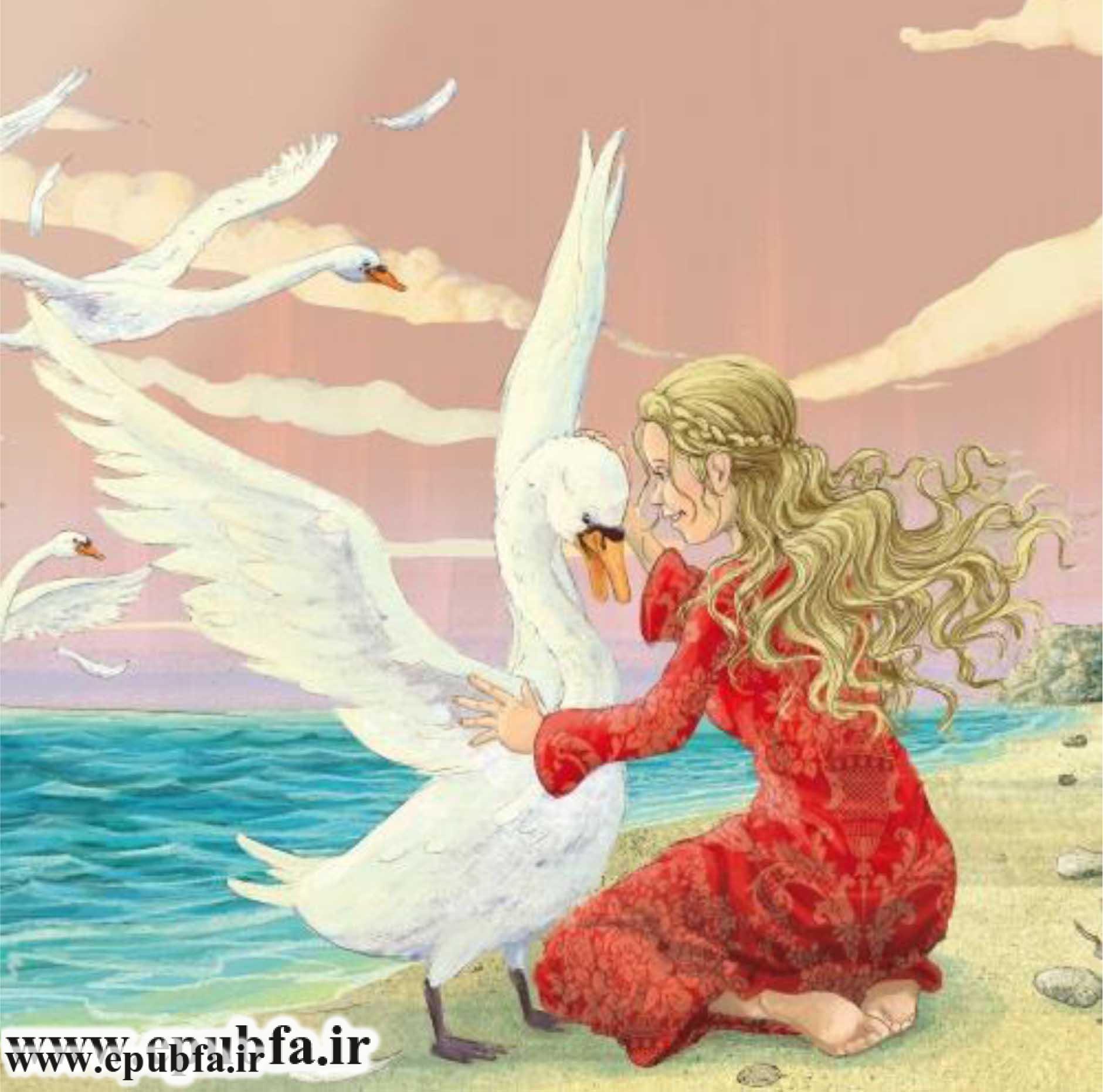 wild-swans-3.jpg