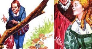 داستان مصور- ریکه کاکلی نوشته شارل پرو در کتاب کودکان ایپابفا (10)