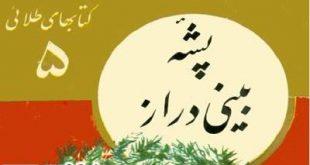 کتاب قدیمی قصه و داستان کودکان- جلد پشه بینی دراز-کتابهای طلائی -ایپابفا (4)