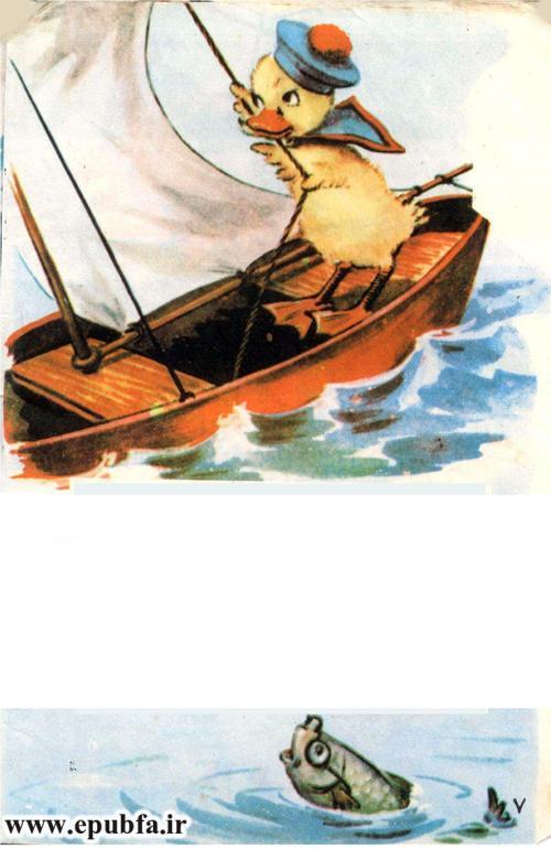 فلوک دریانورد -ایپابفا (13).jpg