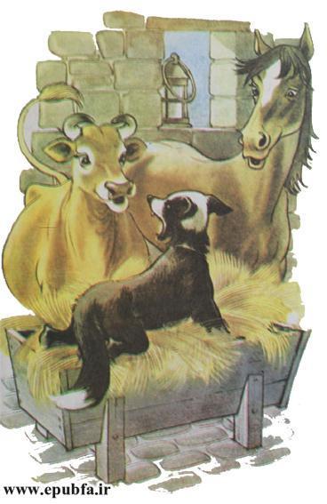 داستان مصور سگی در آخور برای کودکان ایپابفا (3).jpg