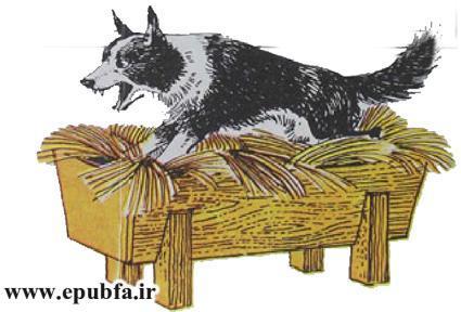 داستان مصور سگی در آخور برای کودکان ایپابفا (4).jpg