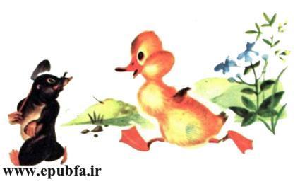 داستان مصور کودکان جوجه اردک کوچولوی بامزه و کتاب کودکان در سایت ایپابفا (5).jpg