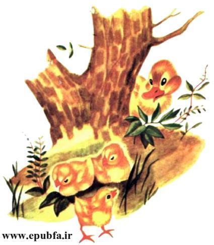 داستان مصور کودکان جوجه اردک کوچولوی بامزه و کتاب کودکان در سایت ایپابفا (8).jpg