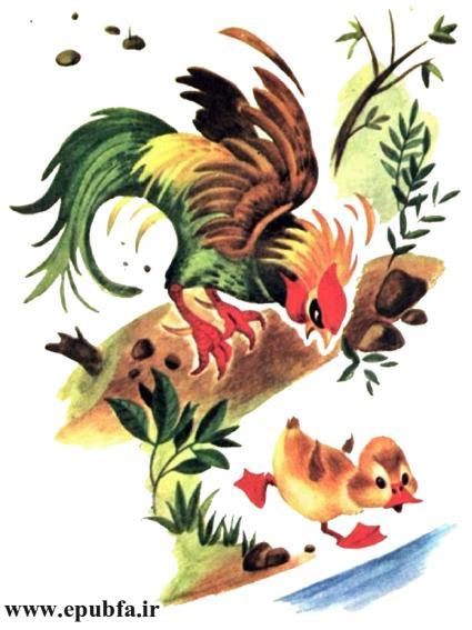 داستان مصور کودکان جوجه اردک کوچولوی بامزه و کتاب کودکان در سایت ایپابفا (10).jpg