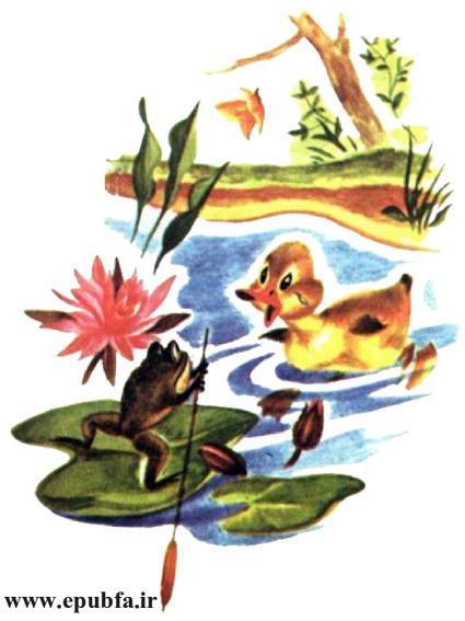 داستان مصور کودکان جوجه اردک کوچولوی بامزه و کتاب کودکان در سایت ایپابفا (11).jpg