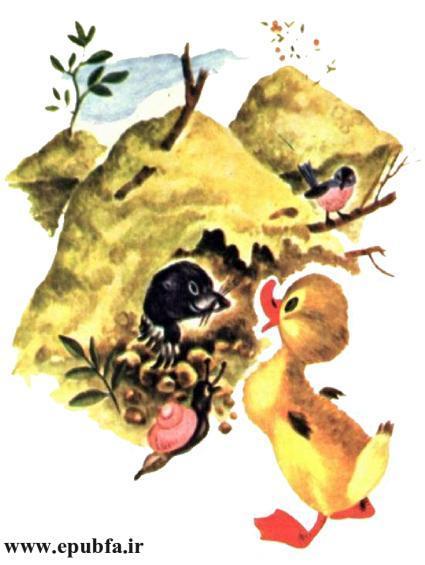 داستان مصور کودکان جوجه اردک کوچولوی بامزه و کتاب کودکان در سایت ایپابفا (14).jpg
