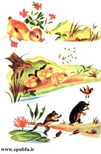 داستان مصور کودکان جوجه اردک کوچولوی بامزه و کتاب کودکان در سایت ایپابفا (17).jpg