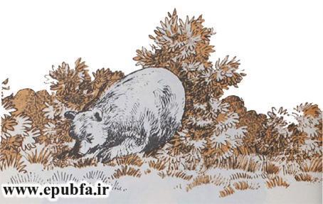 داستان مصور دوست بی وفا و خرس برای کودکان در ایپابفا (2).jpg