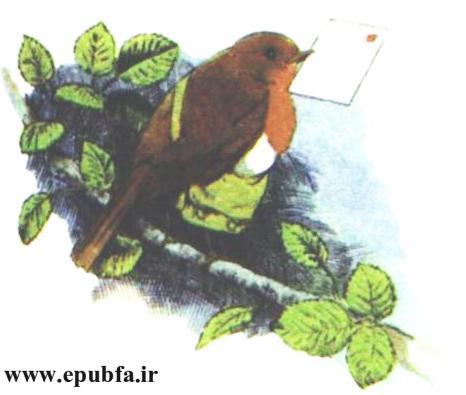 کتاب داستان مصور قدیمی جو پستچی پرنده سینه سرخ برای کودکان ایپابفا (1).jpg