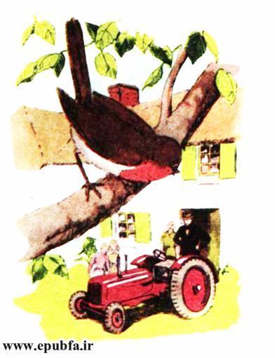 کتاب داستان مصور قدیمی جو پستچی پرنده سینه سرخ برای کودکان ایپابفا (5).jpg