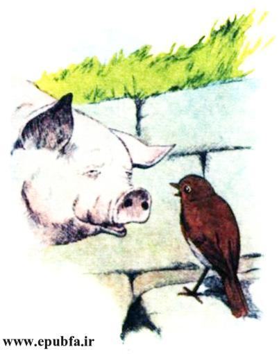 کتاب داستان مصور قدیمی جو پستچی پرنده سینه سرخ برای کودکان ایپابفا (9).jpg