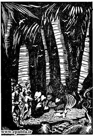 کتاب داستان قدیمی جزیره اسرارآمیز نوشته ژول ورن در کتابهای طلائی ایپابفا  (7).jpg