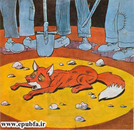داستان کودکانه روباه نخاله و یوزپلنگ وحشی -قصه کودکان-سایت ایپابفا (17).jpg