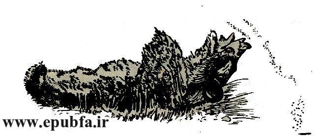 کتاب قدیمی قصه و داستان کودکان-پشه بینی دراز-کتابهای طلائی -ایپابفا
