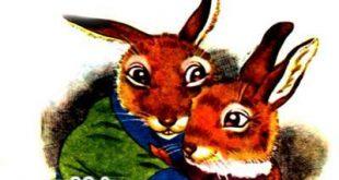 بیچاره آقای نی بل-قصه کودکان-مزرعه توت جنگلی -برای کودکان-epubfa-ایپابفا (13)