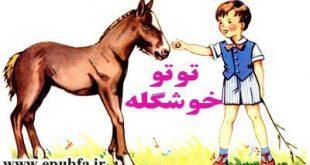 توتو خوشگله-مجموعه شعر تصویری حیوانات برای کودکان -ایپابفا (6-)