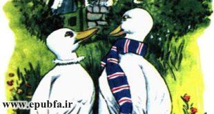 داستان مصور کودکانه -آرزوی یک اردک نوشته پیلگریم برای کودکان ایپابفا (2)