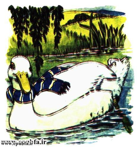 داستان مصور کودکانه آرزوی یک اردک نوشته پیلگریم برای کودکان ایپابفا (3).jpg