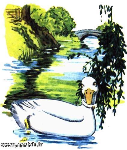داستان مصور کودکانه آرزوی یک اردک نوشته پیلگریم برای کودکان ایپابفا (4).jpg