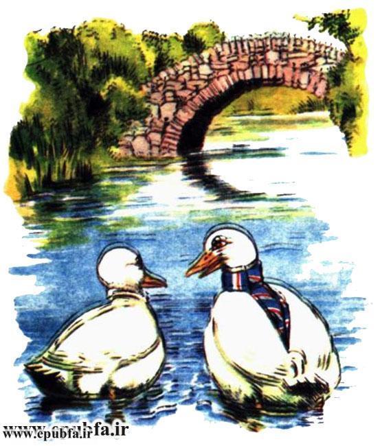 داستان مصور کودکانه آرزوی یک اردک نوشته پیلگریم برای کودکان ایپابفا (5).jpg