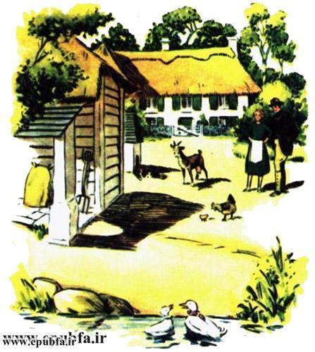 داستان مصور کودکانه آرزوی یک اردک نوشته پیلگریم برای کودکان ایپابفا (6).jpg