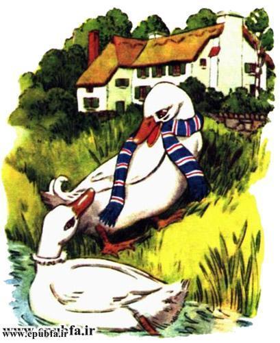 داستان مصور کودکانه آرزوی یک اردک نوشته پیلگریم برای کودکان ایپابفا (7).jpg