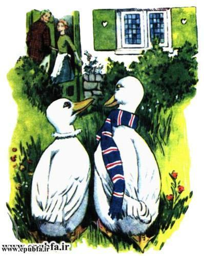 داستان مصور کودکانه آرزوی یک اردک نوشته پیلگریم برای کودکان ایپابفا (8).jpg