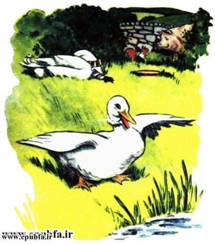 داستان مصور کودکانه آرزوی یک اردک نوشته پیلگریم برای کودکان ایپابفا (10).jpg