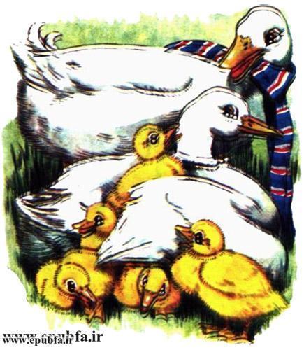 داستان مصور کودکانه آرزوی یک اردک نوشته پیلگریم برای کودکان ایپابفا (13).jpg