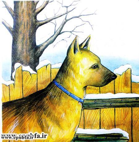 داستان تصویری آزادی در مورد یک سگ وحشی -کتاب کودکان ایپابفا (5).jpg