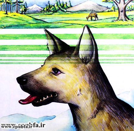 داستان تصویری آزادی در مورد یک سگ وحشی -کتاب کودکان ایپابفا (8).jpg