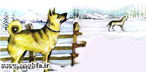 داستان تصویری آزادی در مورد یک سگ وحشی -کتاب کودکان ایپابفا (9).jpg