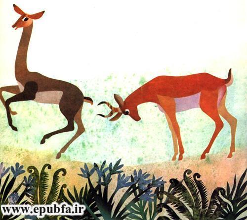 آهوی گردن دراز  -داستان تصویر آهوها برای کودکان و نوجوانان -ایپابفا (7).jpg