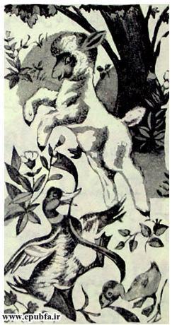 برّه و دوستانش-کتاب قصه تصویری حیوانات مزرعه-کتاب قصه کودکان-epubfa-ایپابفا (7).jpg