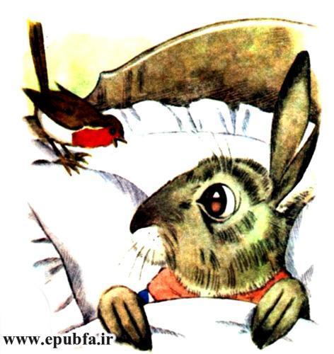 بیچاره آقای نی بل-قصه کودکان-مزرعه توت جنگلی برای کودکان-epubfa-ایپابفا (10).jpg