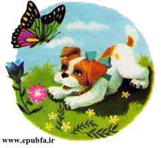 پاپی -کتاب تصویری کودکانه سگ بامزه در مزرعه حیوانات-epubfa-ایپابفا (3).jpg