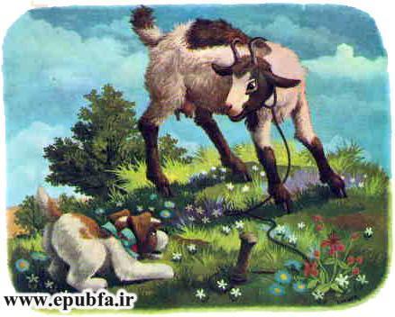 پاپی -کتاب تصویری کودکانه سگ بامزه در مزرعه حیوانات-epubfa-ایپابفا (7).jpg