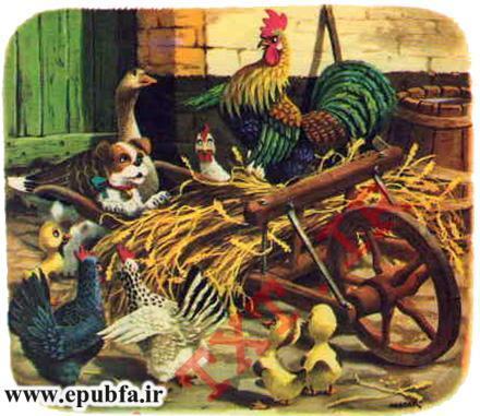 پاپی -کتاب تصویری کودکانه سگ بامزه در مزرعه حیوانات-epubfa-ایپابفا (11).jpg