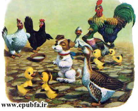 پاپی -کتاب تصویری کودکانه سگ بامزه در مزرعه حیوانات-epubfa-ایپابفا (12).jpg