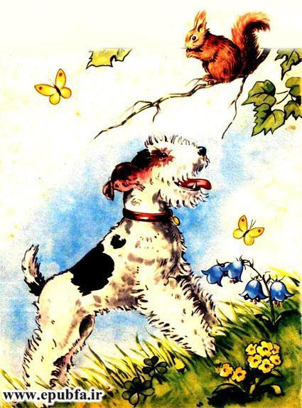 توتو کوچولو-مجموعه شعر تصویری حیوانات برای کودکان -ایپابفا (5).jpg
