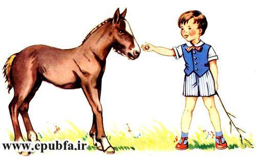 توتو کوچولو-مجموعه شعر تصویری حیوانات برای کودکان -ایپابفا (6).jpg