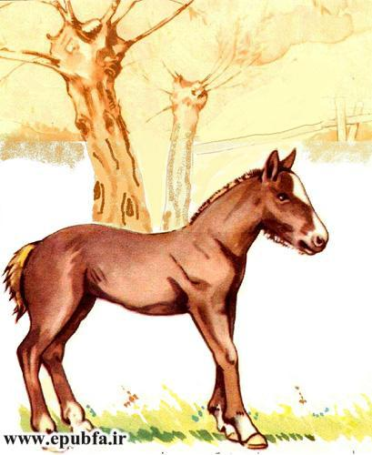 توتو کوچولو-مجموعه شعر تصویری حیوانات برای کودکان -ایپابفا (19).jpg