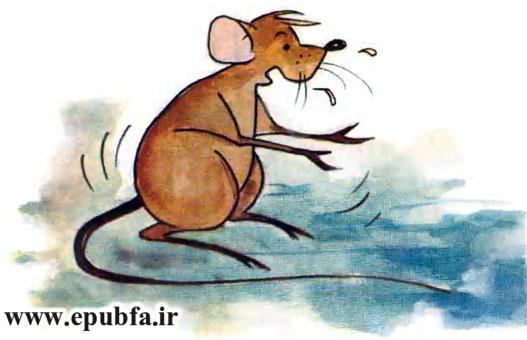 قصه موش و گربه-تیزچنگال ماهیچه دوست-قصه تصویری عبید زاکانی-سوپراسکوپ-ایپابفا (16).jpg