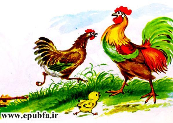جوجه کوچولو و سیب سرخ-کتاب قصه تصویری کودکان-داستان کودکانه ایپابفا (7).jpg