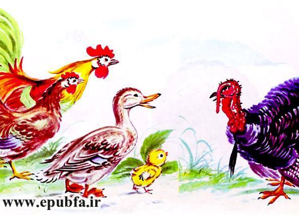 جوجه کوچولو و سیب سرخ-کتاب قصه تصویری کودکان-داستان کودکانه ایپابفا (9).jpg