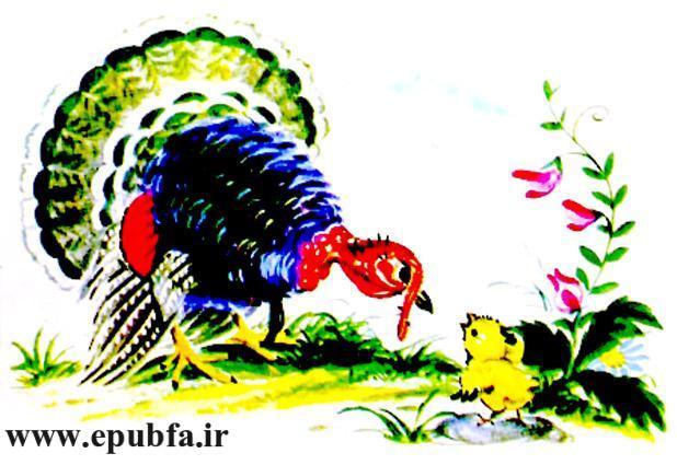 جوجه کوچولو و سیب سرخ-کتاب قصه تصویری کودکان-داستان کودکانه ایپابفا (10).jpg