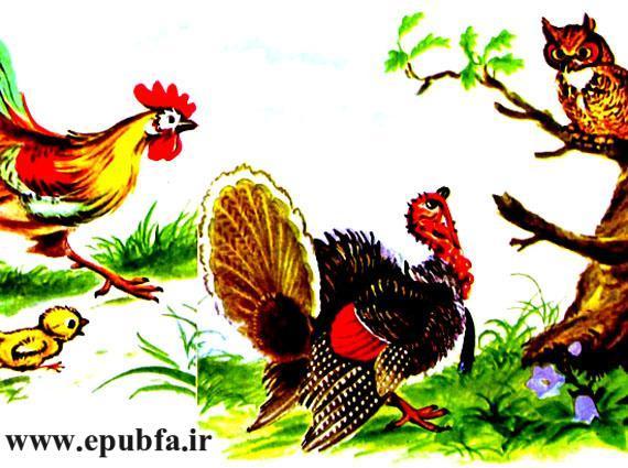 جوجه کوچولو و سیب سرخ-کتاب قصه تصویری کودکان-داستان کودکانه ایپابفا (11).jpg