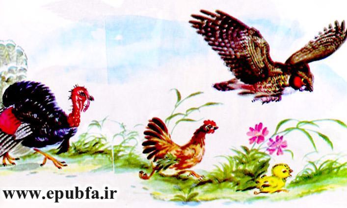 جوجه کوچولو و سیب سرخ-کتاب قصه تصویری کودکان-داستان کودکانه ایپابفا (16).jpg